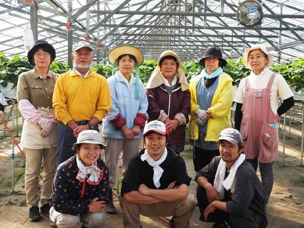 イチゴは全国のイチゴ農家から仕入れる