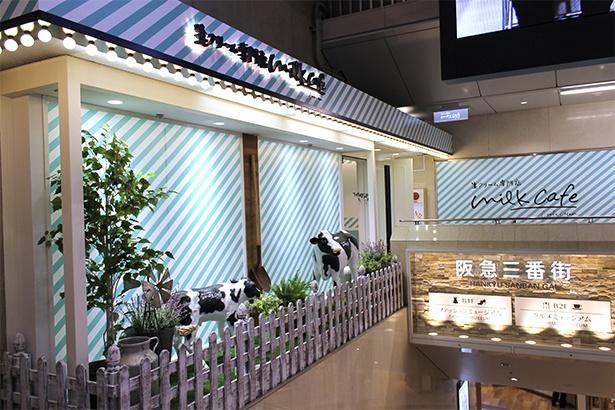 阪急電車改札からも徒歩1分と近く、紀伊國屋書店の入り口隣。店外の装飾もナチュラルでかわいいイメージ