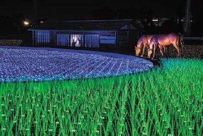 新イルミネーション賞を受賞した「TOKYO MEGA ILLUMINATION」