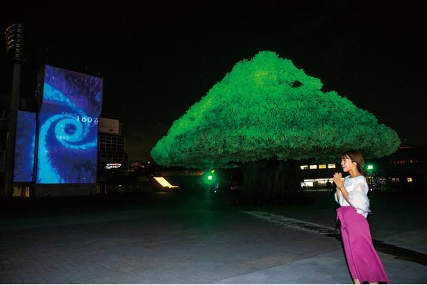 巨大な樹木とプロジェクションマッピングが圧巻の迫力を魅せる、本イベントのシンボル的存在「MEGA TREE GARDEN」