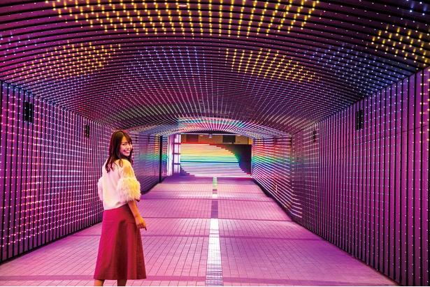 フルカラーLEDに包まれた空間。馬車や騎馬など各時代に活躍した馬の姿が映し出される「TOKYO TIME TUNNEL~光~」