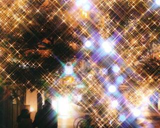 LED約20万球がきらめく!福島県福島市・冬の風物詩「光のしずくイルミネーション」
