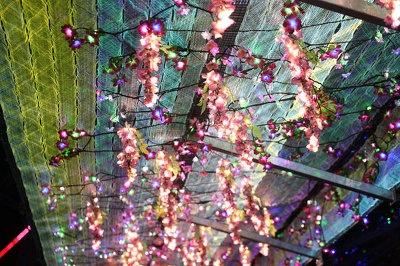 LEDの花棚も美しい