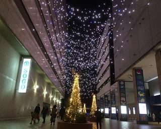 幻想的な東口、温かな西口など横浜駅周辺はイルミの光できらびやかな世界に!