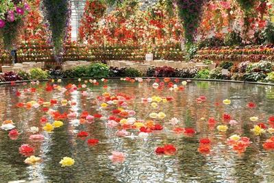 大輪の花が天井からもつるされ、豪華絢爛/なばなの里
