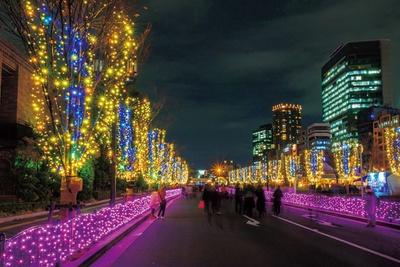 中之島公園のメインストリートが、フォトジェニックな輝きに彩られる/OSAKA光のルネサンス2018