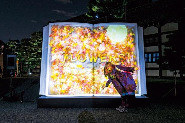 本のオブジェ「BIG BOOK〜秋の初風〜」/秋季特別ライトアップBY NAKED2018ー京都・二条城ー