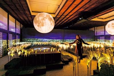 ]直径1.5mの月のオブジェが灯りを照らす「花薄(はなすすき)」/秋季特別ライトアップBY NAKED2018ー京都・二条城ー