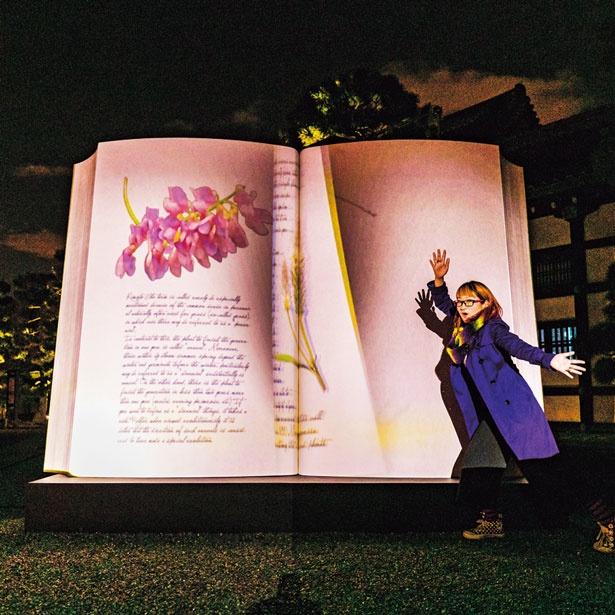 「BIG BOOK〜秋の初風〜」では、ページをめくるポーズをすると楽しい/秋季特別ライトアップBY NAKED2018ー京都・二条城ー