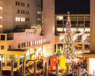 梅田エリアはクリスマス一色!大阪駅から好アクセスのイルミネーション3選