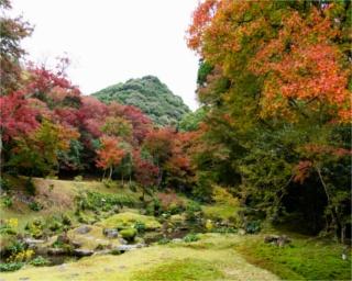 「本坊庭園」。「愛宕山」を借景とした見事なロケーションに紅葉がマッチ