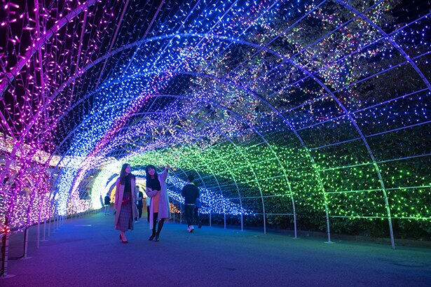 【写真を見る】時間により光が変わる全長140mの光のトンネル「スパイラル・パサージュ」