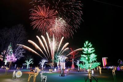 園内では毎週土曜日と特定日に花火も打ち上がる。せっかくなら見ておきたい光景