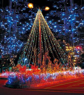 街路樹のイルミネーションは圧巻。阪急水無瀬駅、JR島本駅前のロータリーのツリー型イルミネーションも美しい/島本町イルミネーション