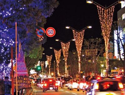 街路樹にはシャンパンゴールドorブルーの落ち着いた雰囲気のライトが点灯し、きらびやかに!/木楽座ストリート イズミネーション2018