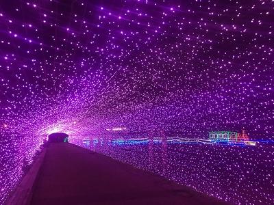 【写真を見る】桜並木をイメージしたアーチトンネルのイルミネーションも