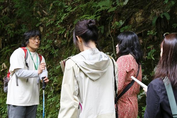 森林セラピストや森林セラピーガイドの案内のもと、セラピーロードを散策。都度ガイドのレクチャーを受けながら、生き物や植物の観察が楽しめる