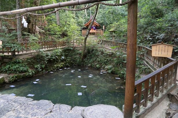 奥には稲田姫命を祀る天鏡神社が鎮座する鏡の池