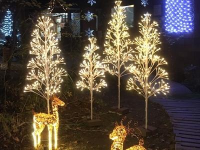 クリスマスの雰囲気に包まれる