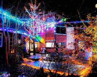 森の中に広がる幻想的な空間。サンタヒルズでクリスマスイルミ実施中