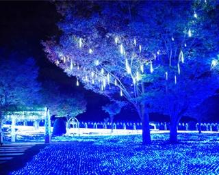 山梨県北杜市・ハイジの村で「光のページェント」開催