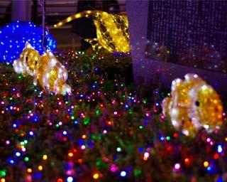 静岡県焼津市でイルミイベント「YAIZU Ocean Dream Illumination」が開催中