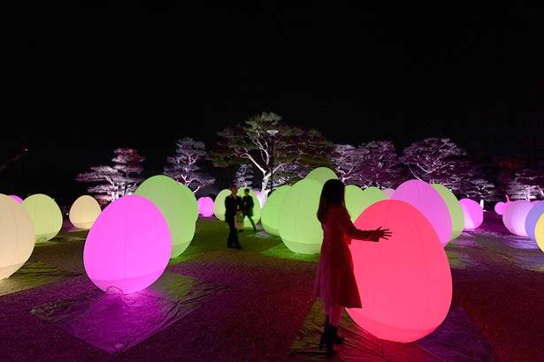高知城跡に置かれた「呼応する、たちつづけるものたちと木々」。呼吸し呼応するかのように光り輝く「チームラボ 高知城 光の祭」