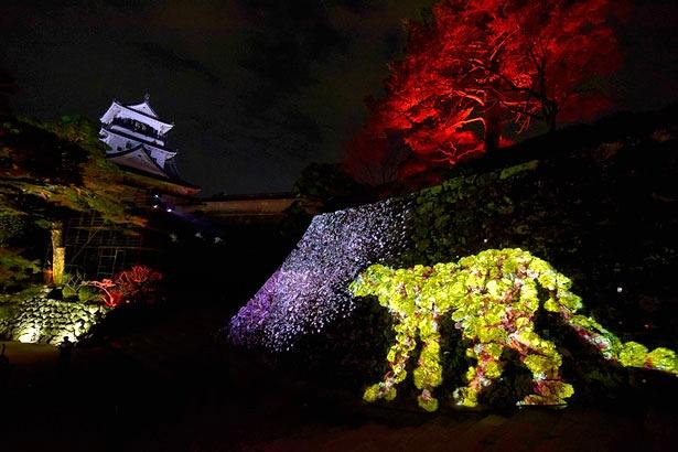 人が近づくと、様々な変化をする花々が生えている石垣の動物たち「チームラボ 高知城 光の祭」