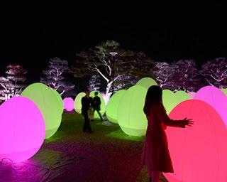 日本三大夜城として名高い「高知城」をライトアップ。呼応する高知城「チームラボ 高知城 光の祭」