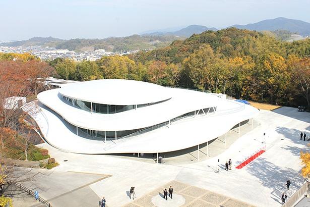 上から見た新校舎。周りの環境と調和している