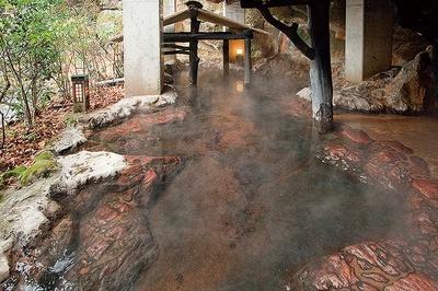 山の宿 新明館 / トンネルを抜けた奥にある混浴の岩戸風呂