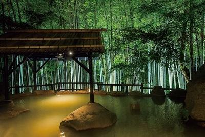 秘境 白川源泉 山荘 竹ふえ / 夜にはライトアップされ幻想的な雰囲気を醸し出す