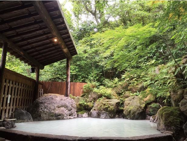 【写真を見る】夢幻の里 春夏秋冬 / 山の青々とした緑に男女別の露天風呂と5つの貸切り湯が点在する
