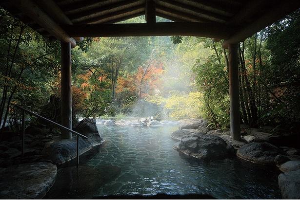 椎葉山荘 しいばの湯 / 清流椎葉川沿いにあり、山あいの風景を眺められる