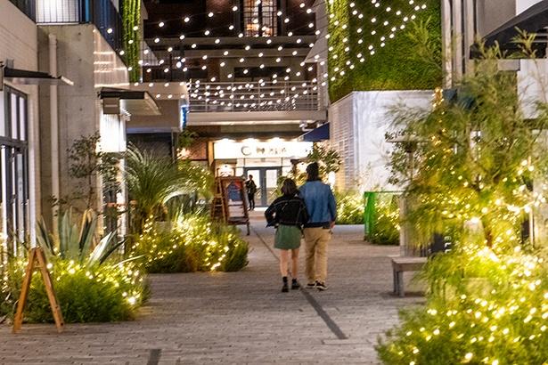 施設中央のメインストリートは、緑とイルミネーションの光が、ぬくもりのある世界を演出している