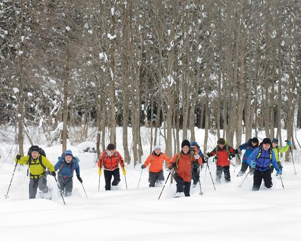 雪の斜面を登ったり降りたりしながら、軽快に雪面を駆けよう!