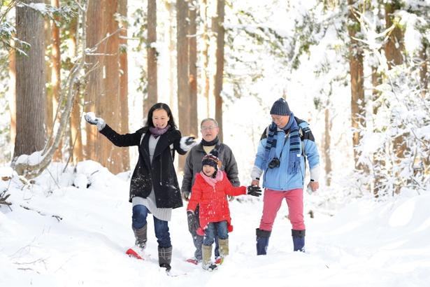 1時間で行う、雪の森の散歩も開催(1000円/スノーシューレンタル含む)