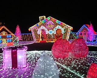 スイーツを50万球の光で表現!岐阜県海津市で「冬の光物語」開催中
