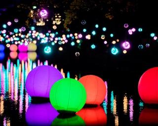 音と光のコラボレーション!群馬県「高崎光のページェント2018」開催中