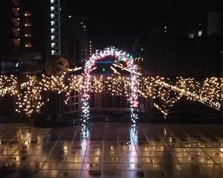 ロマンチックに夜の散策!和歌山県和歌山市「市堀川イルミネーション」