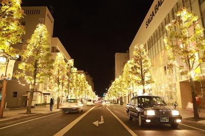 【写真を見る】佐賀市の中央大通りシンボルロード