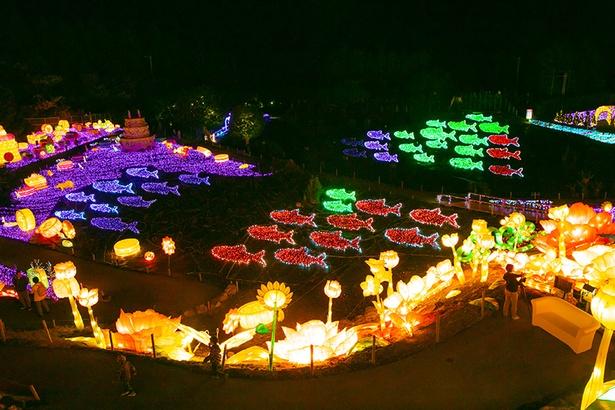 音楽に合わせて色とりどりの魚の群れがイキイキと泳ぎ出す「光と音のショー」