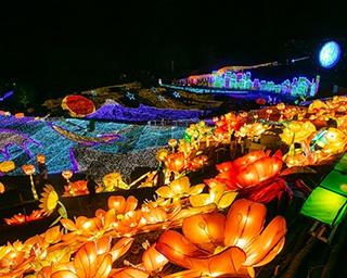直径2メートルの花ランタンが咲き、富士山や波模様などが幻想的にきらめく地上絵のような絶景が広がる
