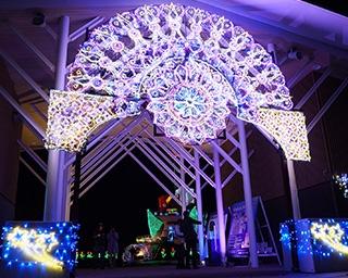 公園一帯をライトアップ!富山県・砺波チューリップ公園でイルミイベント開催中