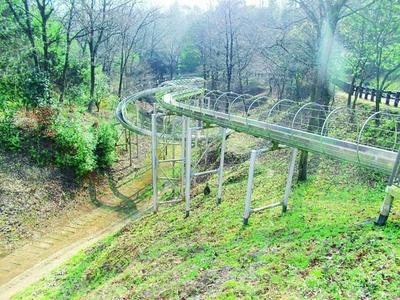 里山の自然の中を滑り降りる!/夢の森公園