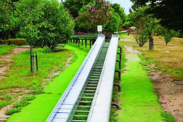 長さの異なる2つのコースを選ぼう/鴻ノ巣山運動公園