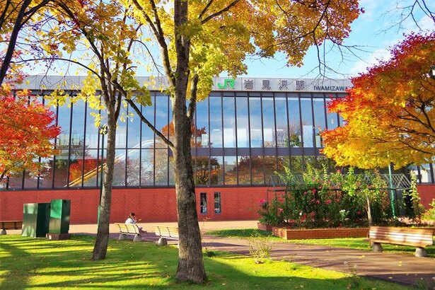 岩見沢駅の駅舎は、2009年に財団法人日本産業デザイン振興会主催のグッドデザイン賞で大賞(内閣総理大臣賞)を受賞