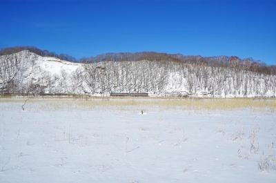 雪に覆われた釧路湿原の中を進む列車(茅沼駅~塘路駅間)