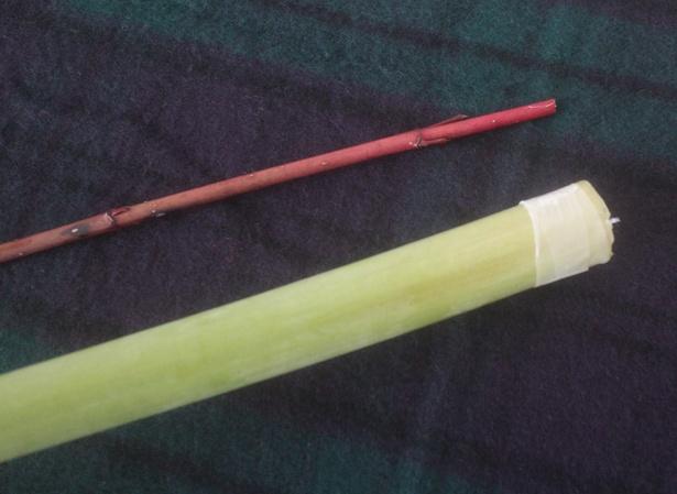 水の中で茎の繊維が割れて、タコさんウィンナーのようにそり返るのを防ぐため、テープが巻かれている場合も