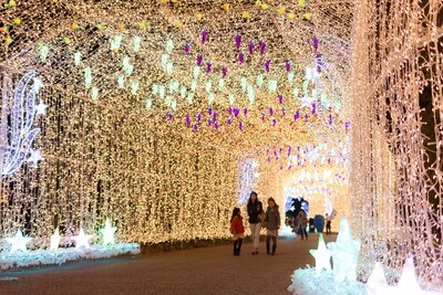 色々なフルーツが装飾された全長150mの光のトンネル